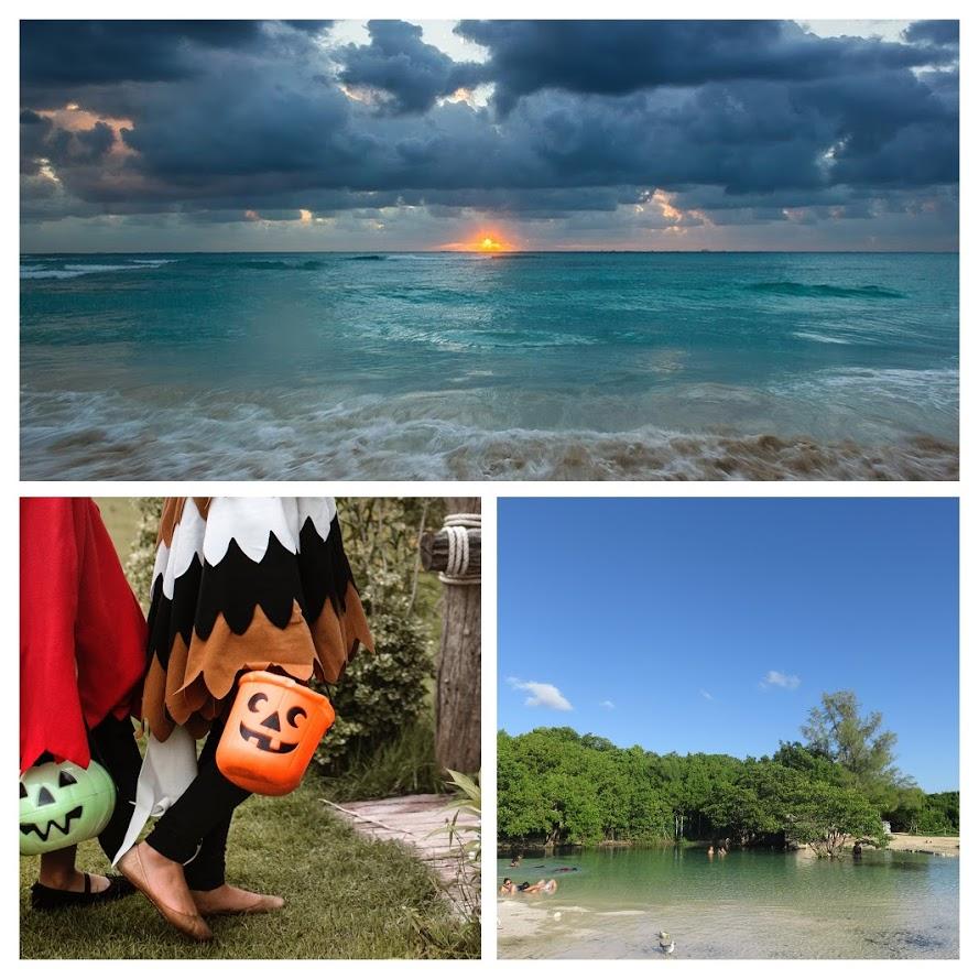 Muchas cosas que hacer en Playa del Carmen