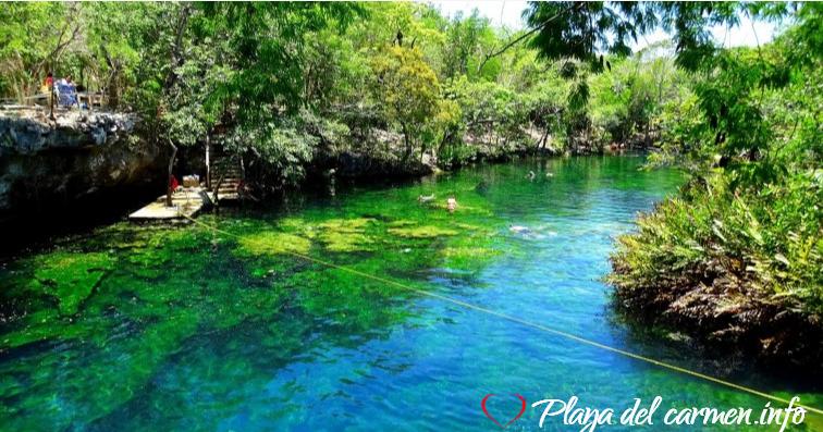 Cenote El Jardín de Edén Quintana Roo
