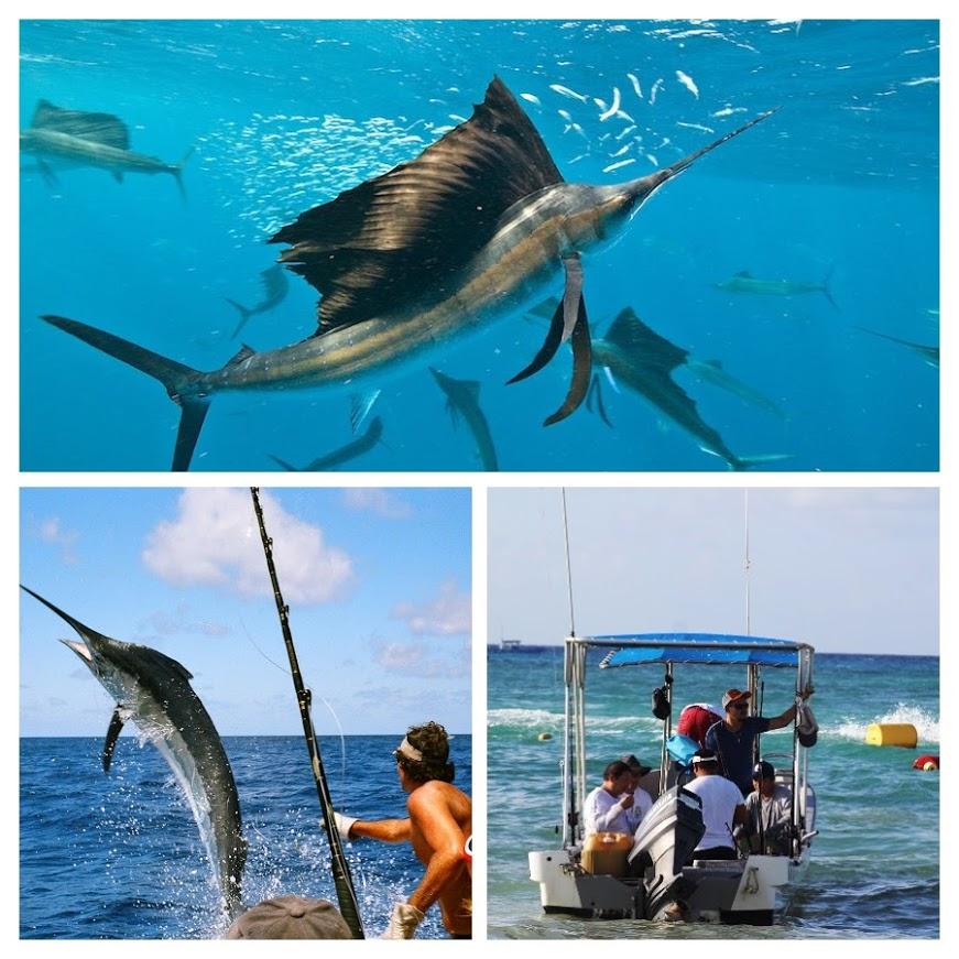 Pesca en Playa del Carmen