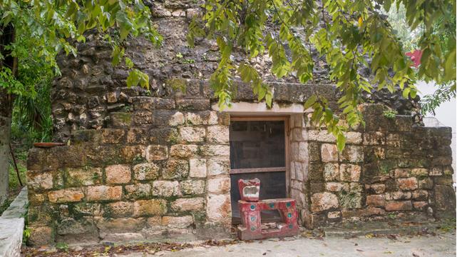Visitar el cedral de Cozumel