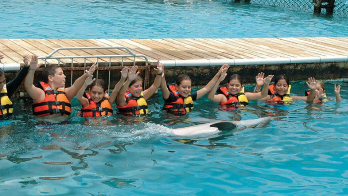 Dolphin Discovery Cozumel.